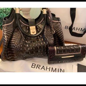 Brahmin Elisa Ironwood Alzette Satchel